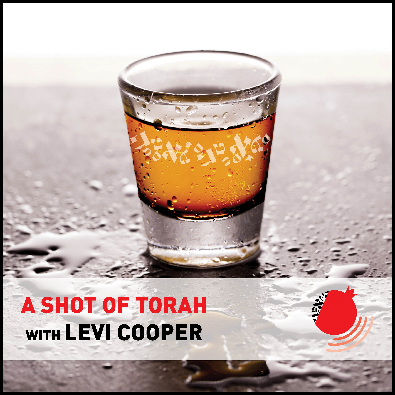 A Shot of Torah
